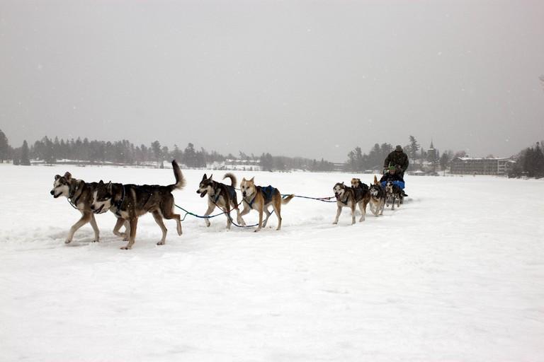 Dogsledding on Mirror Lake | © Samantha Kulpinski / Flickr