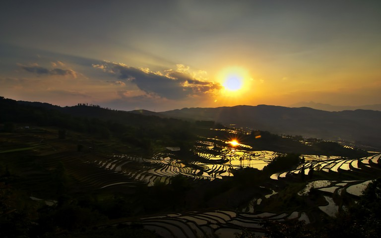 Rice paddies in Yuan Yang (partically cropped)