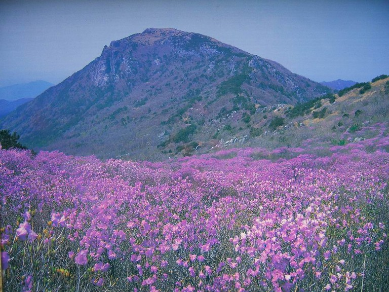 Biseul Mountain, the home of Yuga Temple   © Chanilim714