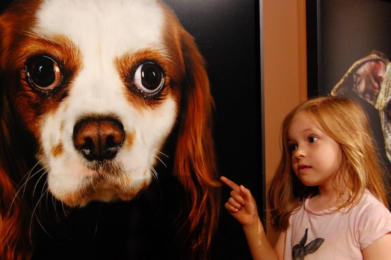 A cute child and her canine doppelgänger at the Musée de la Chasse et de la Nature │© Brett Hammond