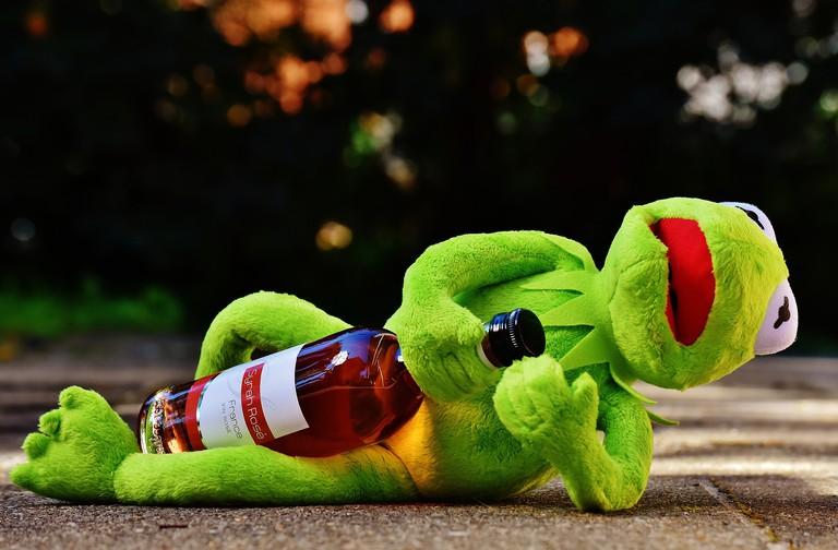 A mortally offended Kermit the Frog │© Alexas_Fotos / Pixabay