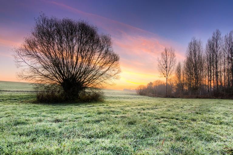 A winter's morning in Moselle │© Jean Balczesak