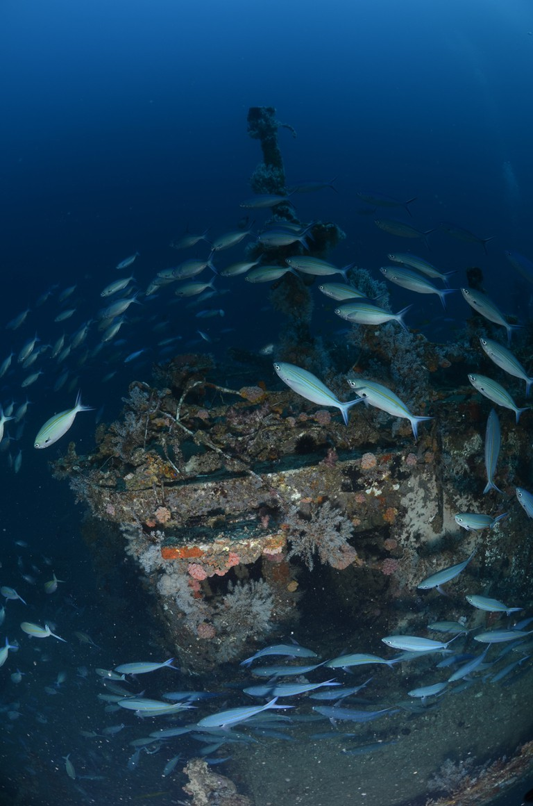 Wheelhouse of the Aldebaran shipwreck | Courtesy of Big Blue Divers