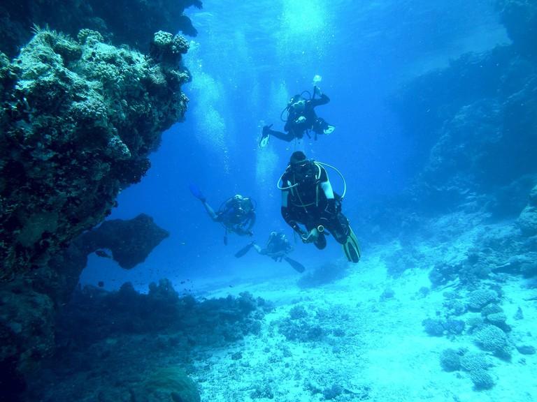 Divers | Pixabay