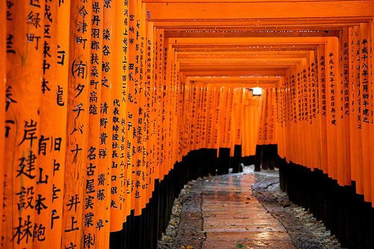 Fushimi Inari Taisha Shrine Tunnel of Torii Gates