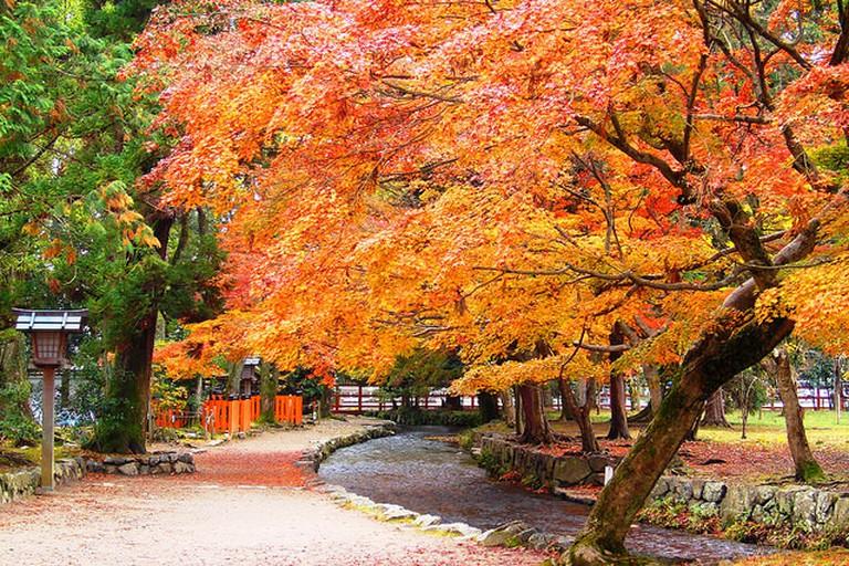 Kamigamo Shrine Precincts