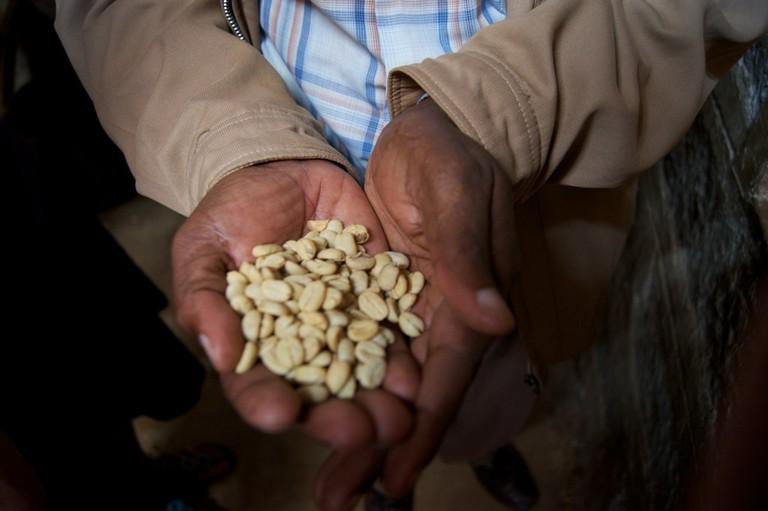 High-grade coffee beans   © Adam Posey / Flickr