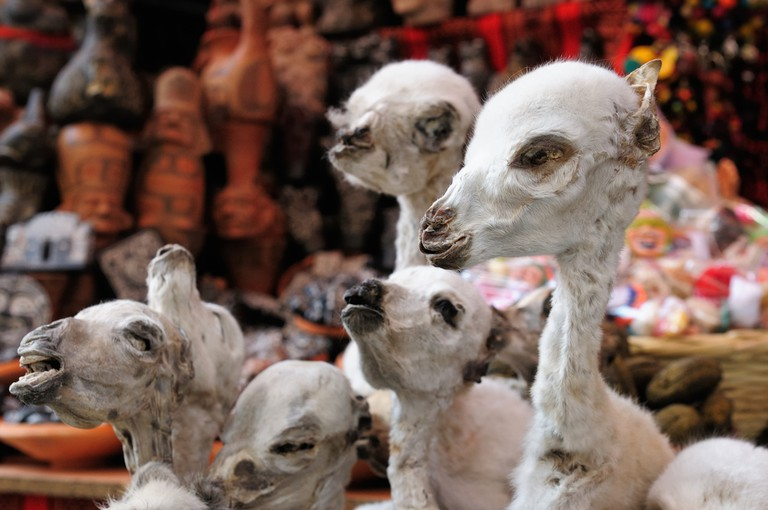 La Paz' spooky Witches' Market has all kinds of potions and voodoo charms | © Rafal Cichawa/Shutterstock