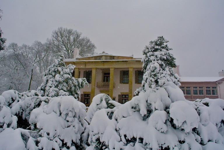 snow / (c) Rex Hammock / Flickr