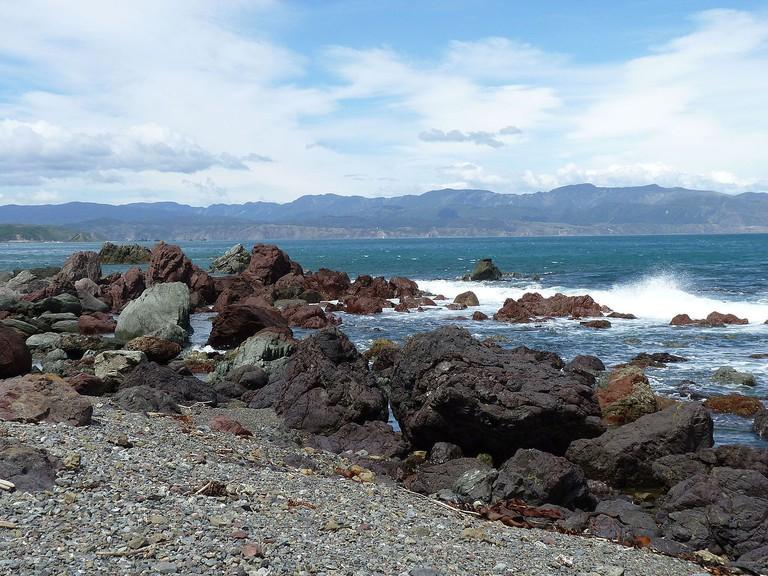 Te Kopahou Reserve, Red Rocks Beach, Wellington | © Michal Klajban/Wikimedia Commons