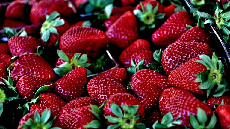 Where-to-Pick-the-Best-Fruit-in-South-Africa