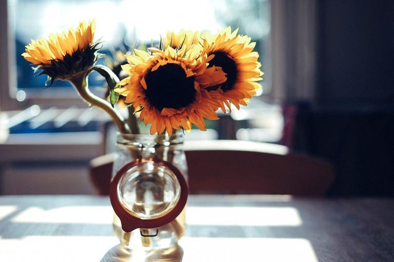 It's always sunny in Durbs © Freddie Marriage /Unsplash