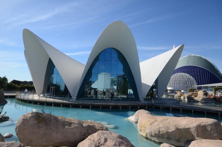 Oceanogràfic in Valencia, Spain   © Tuscasasrurales/Flickr