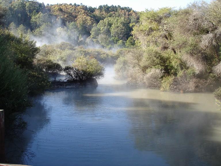 Whakarewarewa Forest and hot springs   © Pablo Rodríguez/Flickr