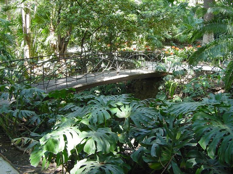 Pretty 19th century bridge in Malaga´s botanical gardens; Olga Berrios, flickr