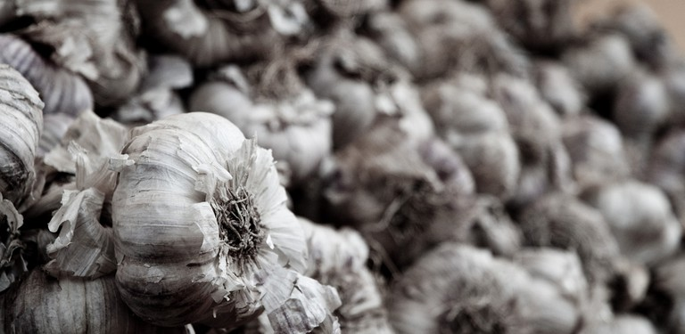 The ubiquitous garlic is a key part of French cuisine | © Søren øxenhave/flickr