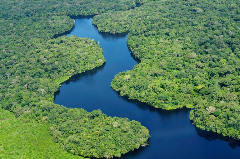 Amazon rainforest |© Neil Palmer/CIAT/Flickr