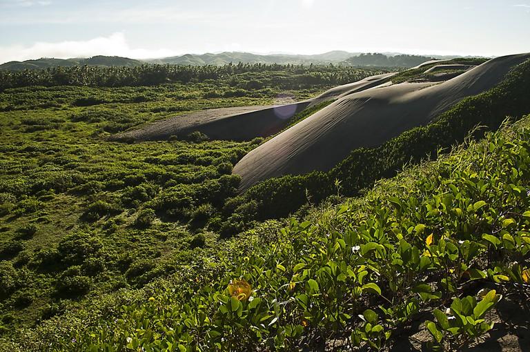 Sigatoka Sand Dunes   ©Kyle Post / Flickr