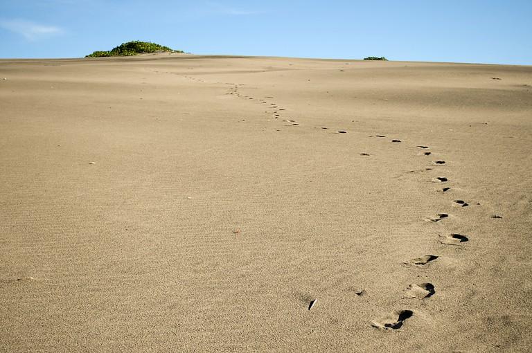 Sigatoka Sand Dunes | ©Kyle Post / Flickr
