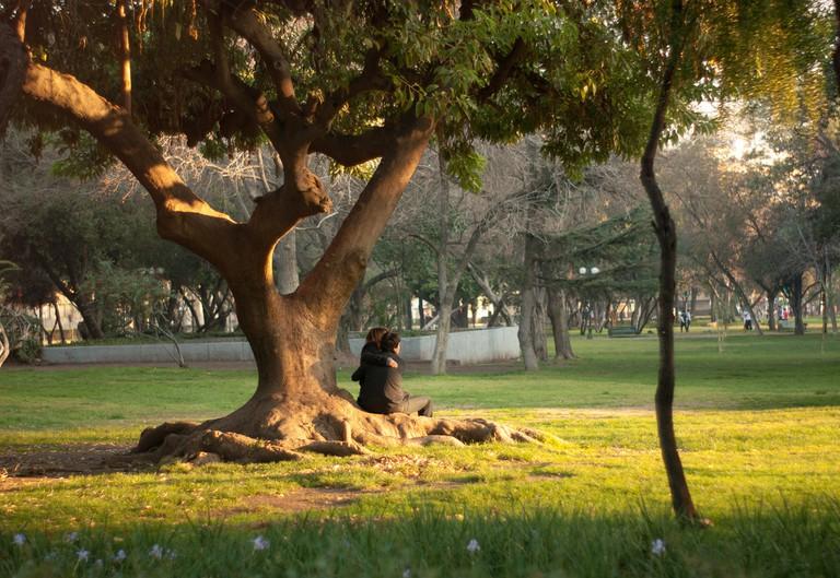 Tree hugging | © Eduardo Zárate