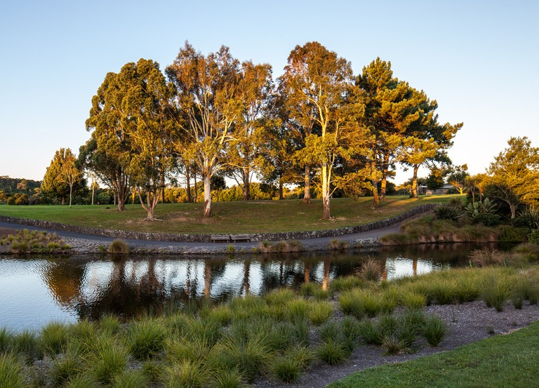 Sunset, Auckland Botanic Gardens | © russellstreet/Flickr
