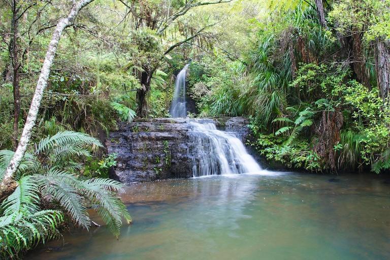 Omeru Reserve   © ItravelNZ/Flickr