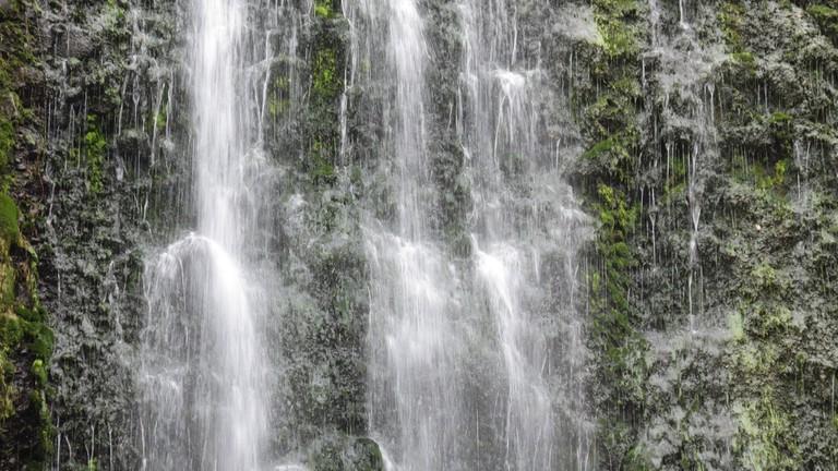 Karekare Falls, Waitakere Ranges | © Robert Linsdell/Flickr