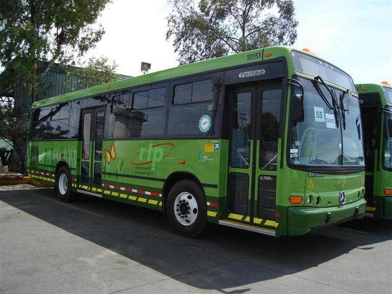 RTP bus | © SerialKiller 666 RTP/WikiCommons