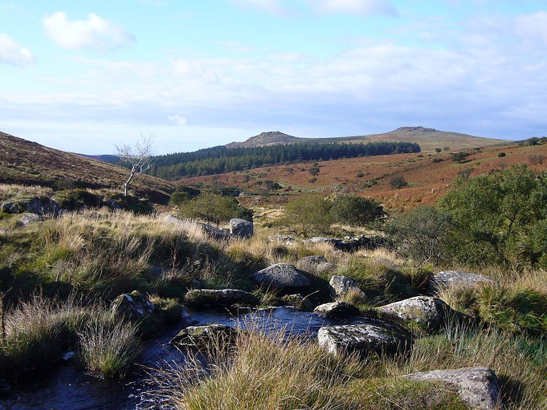 View from the River Meavy towards Sharpitor and Leather Tor © Herbythyme / Wikimedia
