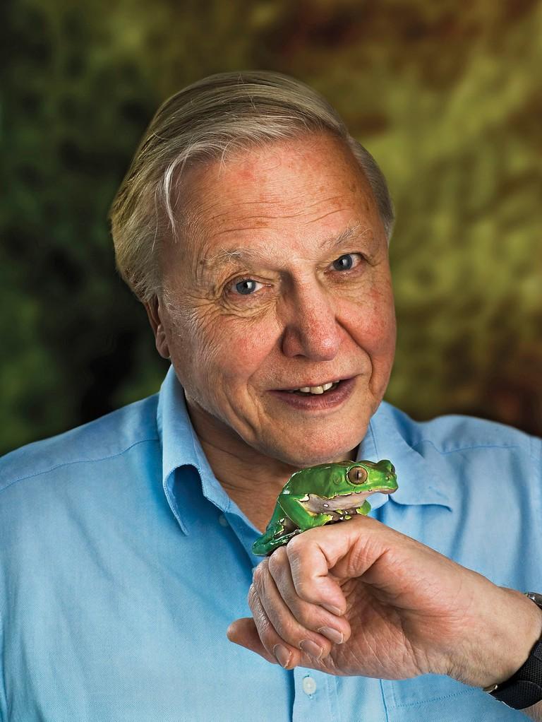 Sir David Attenborough | © Johann Edwin Heupel