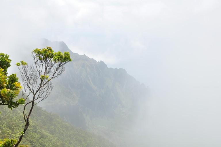 Na Pali Coast in the fog.
