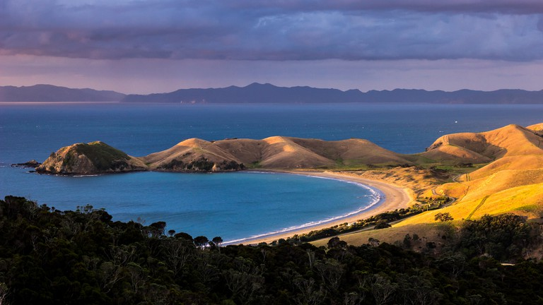 Great Barrier Island │© Alex Schwab/Flickr