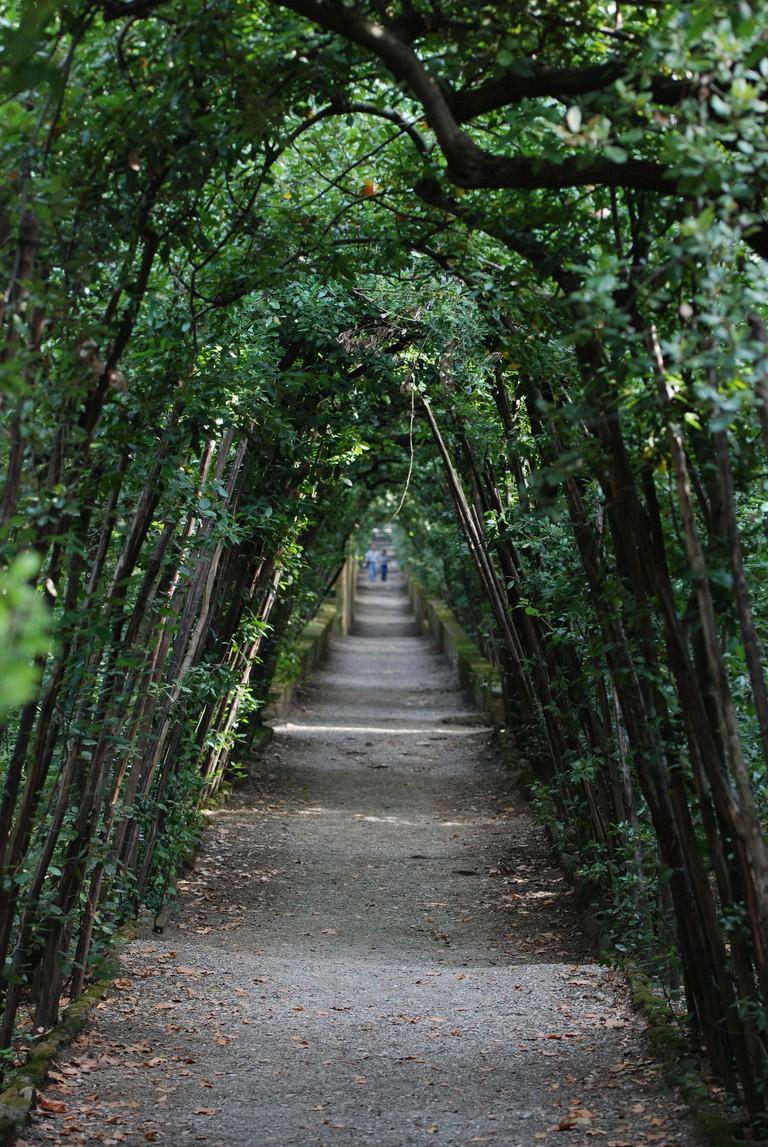 Green Arch in Boboli Garden, Tammy Lo, Flikr