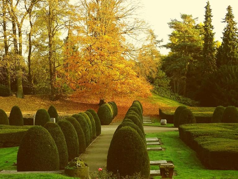 Ohlsdorf Cemetery   Pixabay