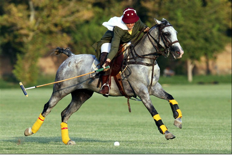 Female polo player in Iran | © Shahab-d / Wikimedia Commons
