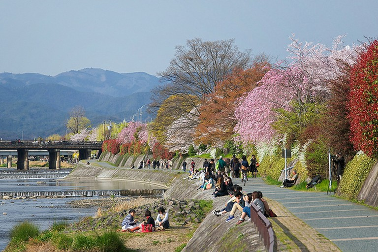 The Romantic Atmosphere of the Kamo River