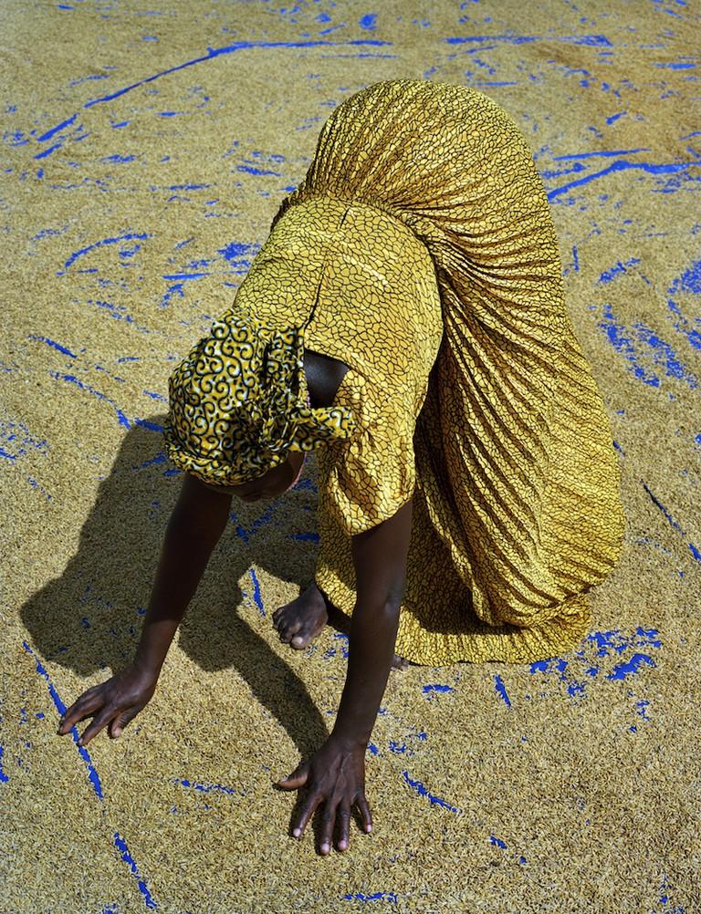 Kenneth O'Halloran Rice Farmer, Sanwougou Lalle, Togo, 2015 | © 2016 Kenneth O'Halloran