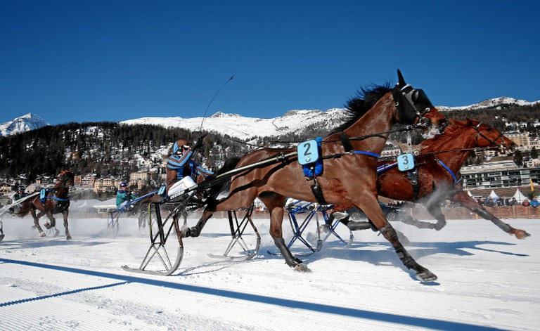 One of the races at 2017 White Turf   © swiss-image/AndyMettler