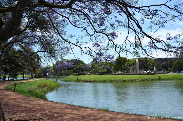 Parque Ibirapuera © Gabriela Sakamoto/Flickr