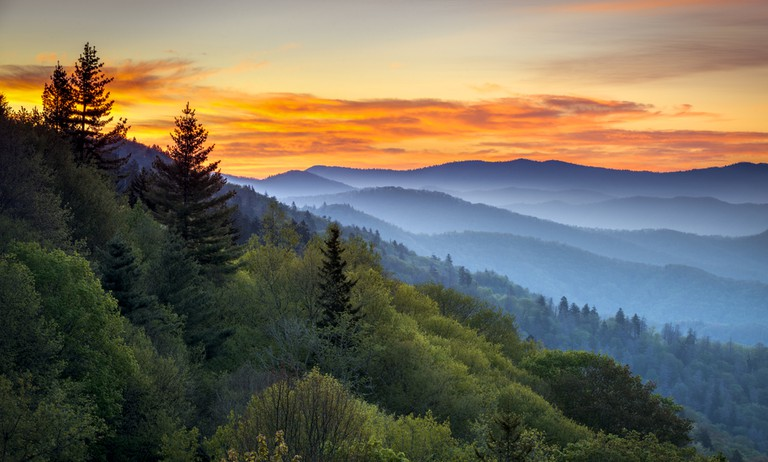 ©Dave Allen Photography / Shutterstock