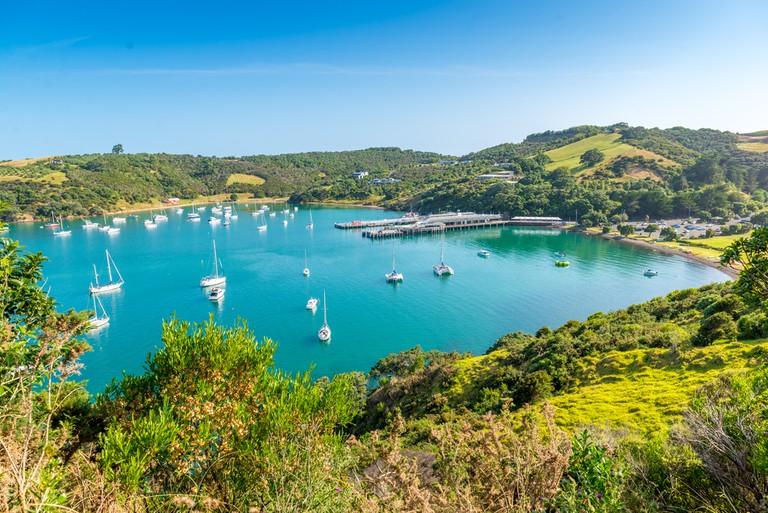 Waiheke Island, New Zealand │© Troy Wegman/Shutterstock