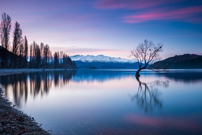 © Winston Tan / Shutterstock