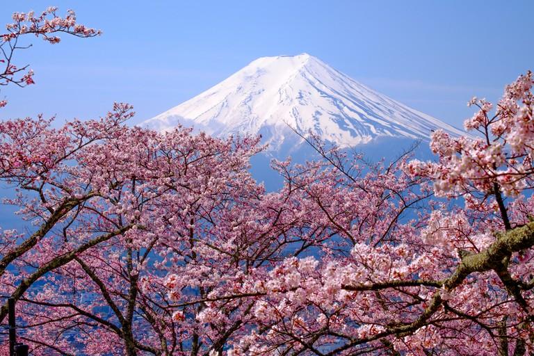 Mt Fuji | ©Shuttertong / Shutterstock
