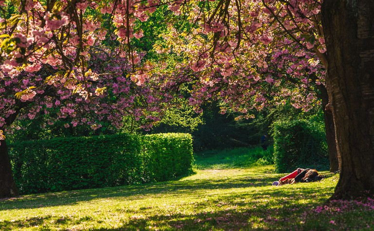 Spring in the Parc de Sceaux │© Linh Nguyen / Flickr