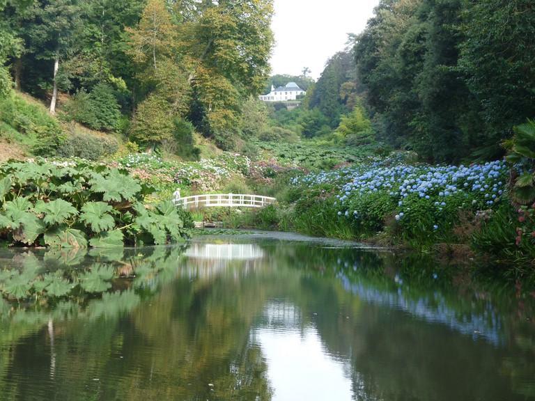 Trebah Garden © Michael Clarke / Flickr