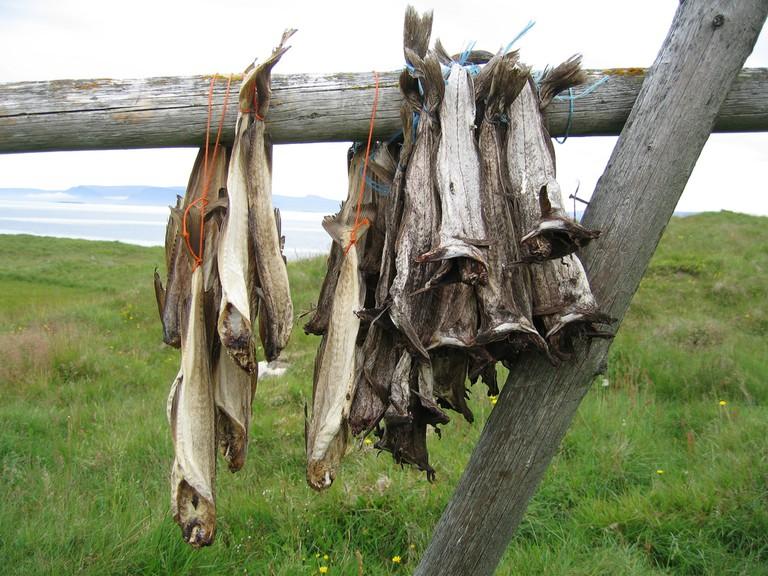 Harðfiskur: dried fish | © Ingunn H Nielsen / Flickr