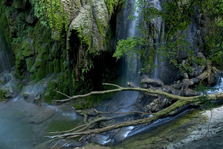 Gorman Falls | © Randall Chancellor