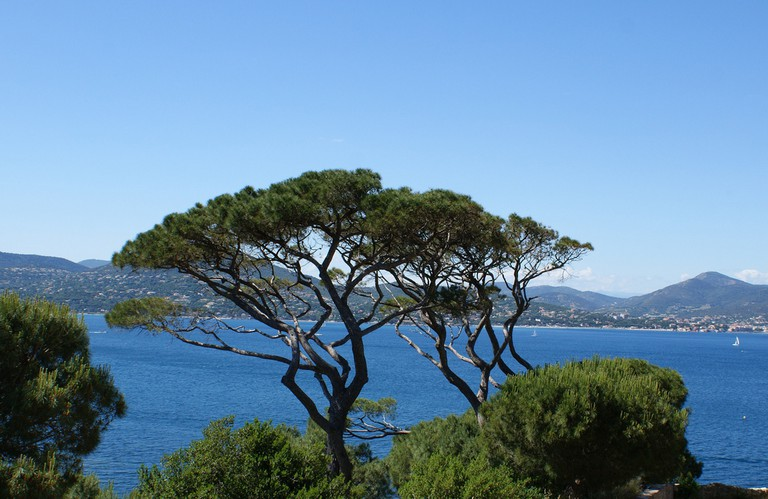 Views over the bay from the citadel in St Tropez | © Spencer Wright/Flickr