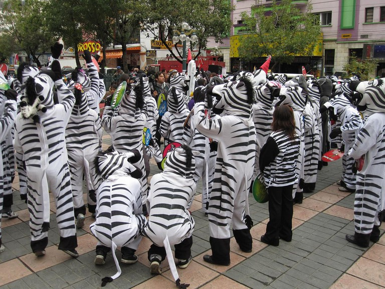 Zebras on La Paz' main street | © juhauski72/Flickr