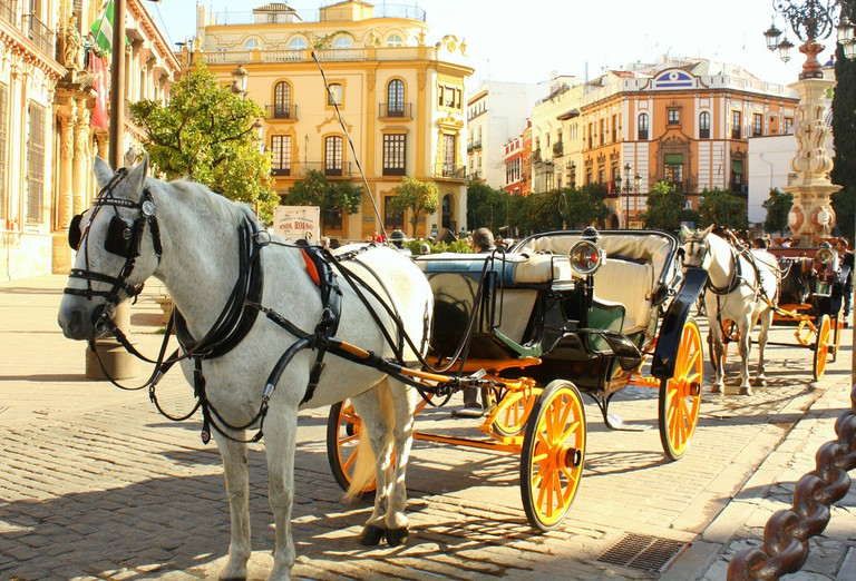 """<ahref=""""https://www.flickr.com/photos/girlfromarock/"""">Taxi! Horse and carriage taxi rides in Seville 